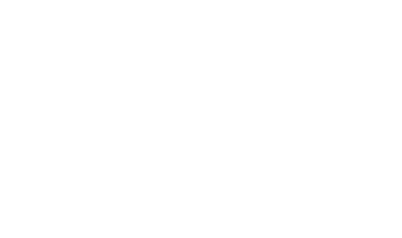 Diamond elite seal