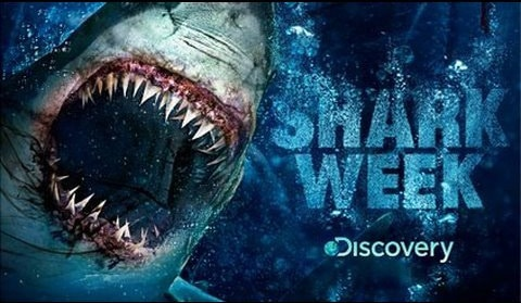 shark-week-discovery-channel1